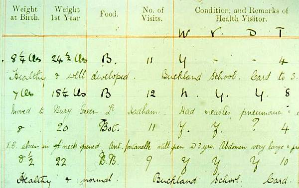 Extract from Health Visitor Ledgers