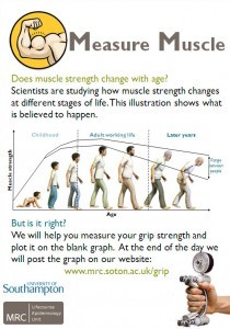 muscle-measure-poster-210x300