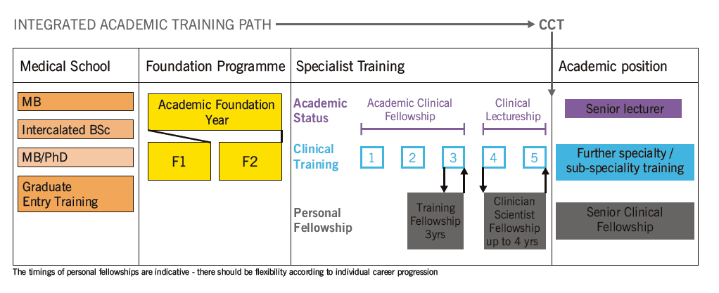 Integrated clinical academic training pathway, from medical school to independent senior appointment